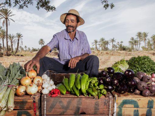 FACILITER LA COMMERCIALISATION DE PRODUITS AGROECOLOGIQUES